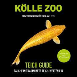 Aktueller Prospekt Kölle Zoo