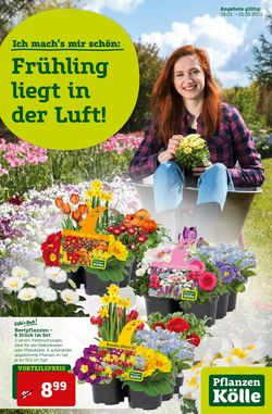 Prospekt Pflanzen-Kölle vom 19.03.2020
